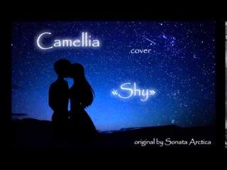 Songtext von Sonata Arctica - Shy Lyrics