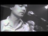 Talking Heads,
