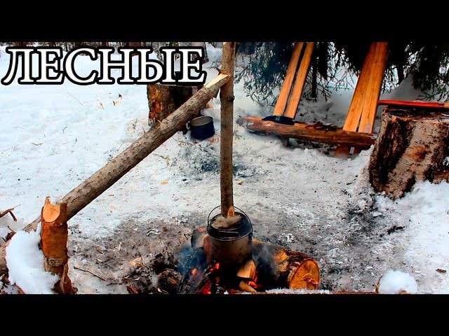 ЛАГЕРЬ В ЛЕСУ | БУШКРАФТ - Camping And Bushcraft