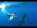 Красивая расслабляющая инструментальная музыка. Real beautiful mermaids ever seen -1080p HD