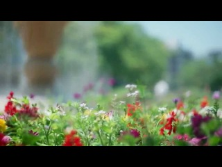 SONY A7 + HELIOS-44-2 58mmf2.0 Russian M42 Old lens Bokeh Movie Test muk cameraservice