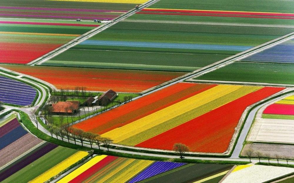 cN0GOhlv50 - 20 мест, где природа не пожалела цветов