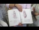 Мышцы нижней конечности (Mm. membri inferioris)  д.м.н., проф. Романюк С.Н.