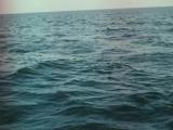 В поисках капитана Гранта. Серия 6 из 7 1985