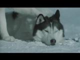 Белый плен (2006) супер фильм