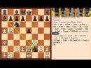 Красивый мат слонами и конем Шахматная ловушка 4 в Гамбите Эванса