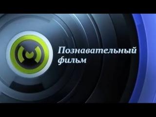 Познавательный фильм. Вторая жизнь автохлама (2015)