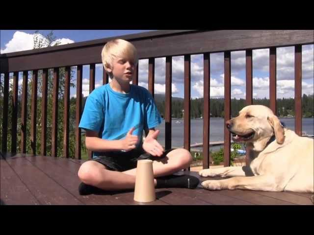 Cups from Pitch Perfect by Anna Kendrick Cover by Carson Lueders
