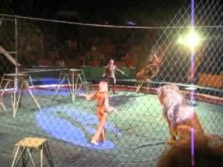 Жесть!!! Львы в Нижнем Тагиле напали на дресировщика!