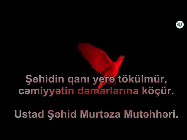 Şəhadətə can atanlar