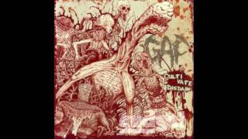 Gaf - Cultivate Disdain FULL ALBUM (2010 - Death Metal / Grindcore)