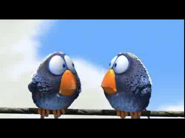 Веселый мульт с приколами о глупых птичках на проводе