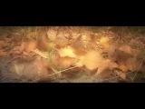 Осень в Ноябрьске 2015 г. (Музыка гр. С.У.М.Е.Р.К.И - Первая кровь)