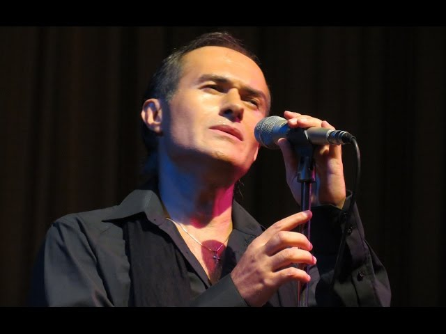 Дмитрий Ряхин - Голубка