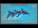 Шоу Дельфинов Геленджикский Дельфинарий Dolphin show Gelendzhik Dolphinarium 2007