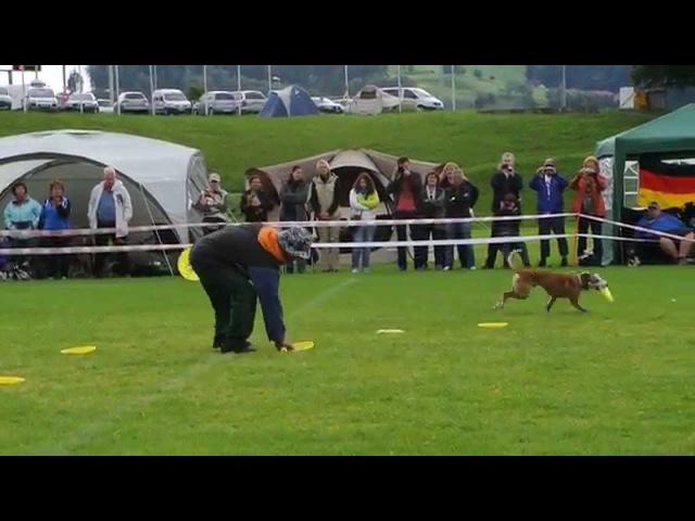 Yachi Hirai Vega Hundefrisbee EM St.Gallen