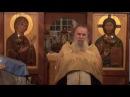 Идти против течения Свящ Павел Адельгейм
