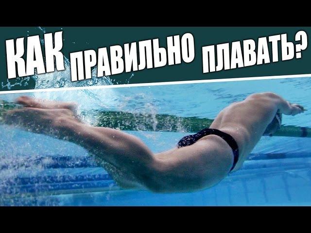 Как правильно плавать кролем? Данил Антоненков.