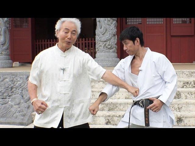 松濤館流と沖縄剛柔流が出会ったMeitatsu Yagi (Gojyu-ryu) Tatsuya Naka(Shotokan-ryu)