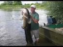 Ловля сома на квок и судака на джиг Рыбалка на Чебоксарском водохранилище