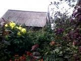 Краткий обзор нашей деревни . 2 Часть