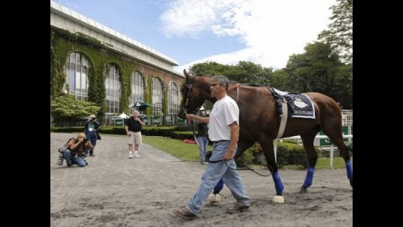 AP Analysis American Pharoah's Triple Crown Try