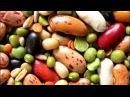 Пища Богов. Тайны бобовых культур фасоль, горох, бобы и тд.