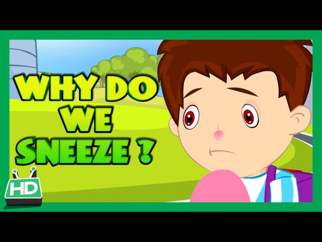 Why Do We Sneeze