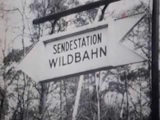Радио-диверсанты , документальный фильм СССР 1973 год