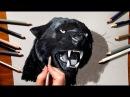 3D Pencil Drawing Roaring Black Panther Speed Draw Jasmina Susak