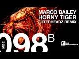 Marco Bailey - Horny Tiger (Filterheadz Remix)