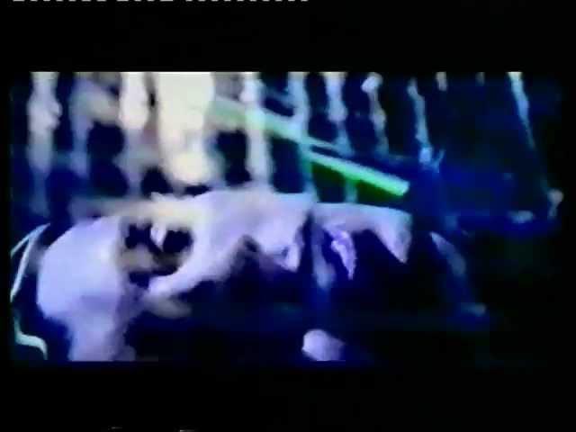 Мой сон - Т.Буланова DJ Цветкоff (Клип 2000)