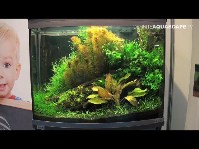 Planted aquariums of Heimtiermesse 2015, Hannover - part 12
