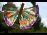 Простые поделки для детей. Бабочки из прищепок и бумажных платочков.