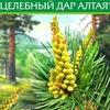 """Целебный дар Алтая (компания """"Бальзам"""")"""