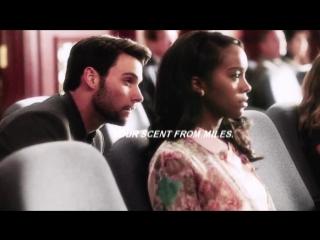 Connor & Michaela ► A N I M A L S