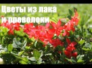 Цветы из лака и проволоки * DIY: Nail Polish Flowercrown