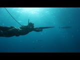 Sharks &amp Stripes- Spearfishing Wahoo