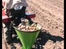 Картофелесажалка для минитрактора МТЗ 132