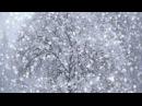 Ռուբեն Հախվերդյան - Ձյունը իր երգն է երգում