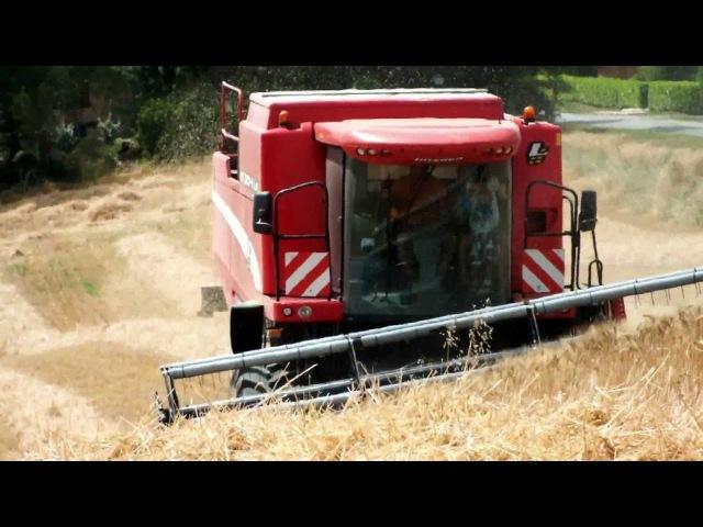 Moisson de blé 2012 en coteaux avec une laverda M 304 LS
