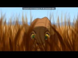 «С моей стены» под музыку Король-лев 2: Гордость Симбы - Он есть в тебе. Picrolla