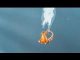Короткометражки от Pixar Осьминоги
