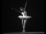 Танцуют Светлана Колыванова и Теодор Попеску