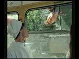 Эпизод с трамваями из фильма Ширли-Мырли