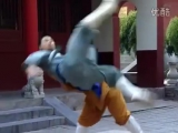 Shaolin kung fu combat_ acupressure (dian xue)