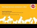 Наследственные аномалии собак