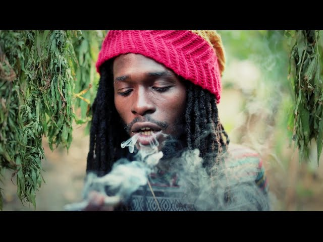 Weed Songs: Jesse Royal - Gimmie Likkle / Finally highway420