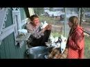 Любовь и голуби 1984 – Рассказ про Володьку-дурачка