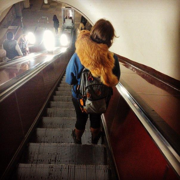 С котом в метро